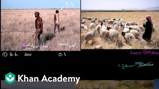 Land productivity limiting human population | Cosmology & Astronomy | Khan Academy