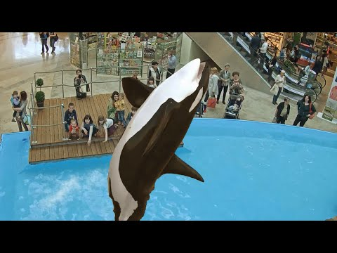 Orca in a Shopping Mall - Ocean Adventure - Augmented Reality experience by INDE