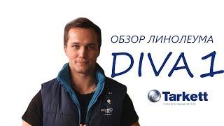 Обзор: Линолеум Tarkett Diva/ Таркетт Дива