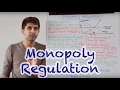 Y2/IB 31) Competition Policy - Monopoly Regulation