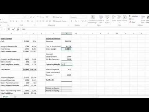 Excel  2013 Tutorial - How to Calculate Return on Assets and Return on Equity Shortly