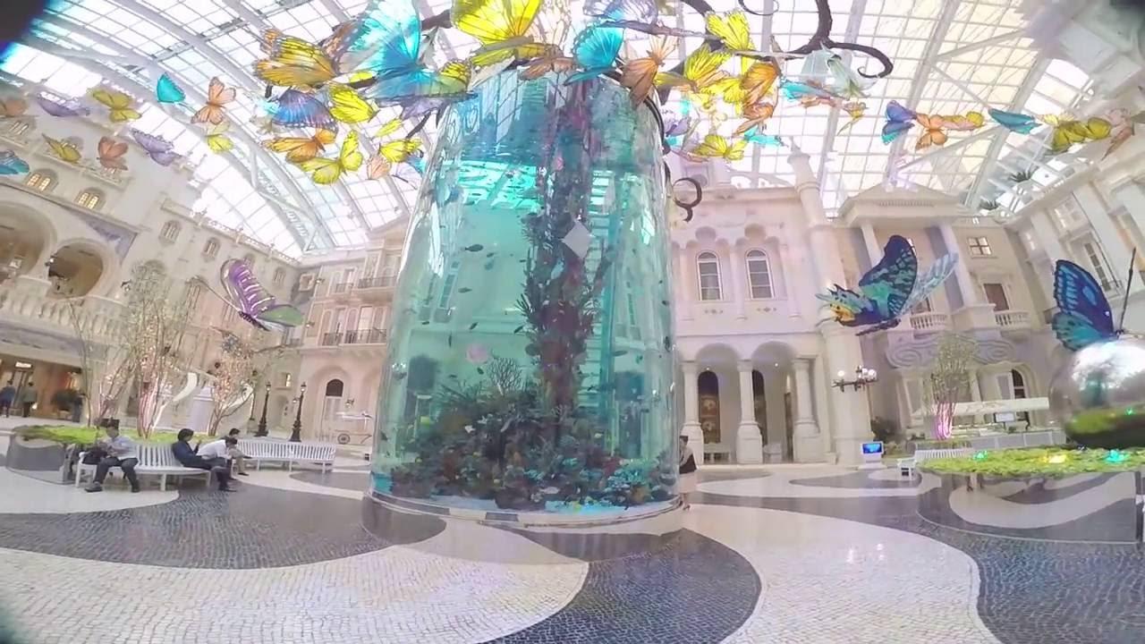 Mgm Hotel Casino Macau Cool Aquarium Youtube