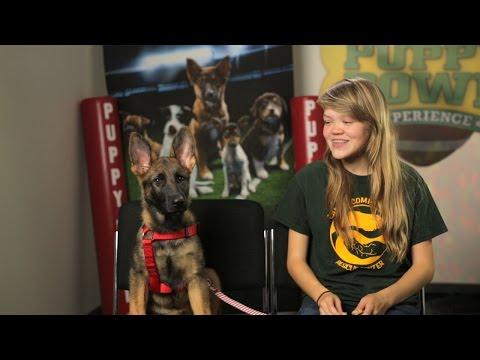 Adoption Tails: Brooklyn | Puppy Bowl XII