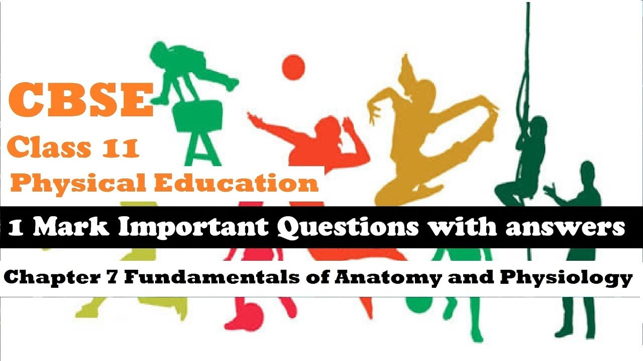 CBSE Class 11 Physical Education 1 mark Important Question Answer ...