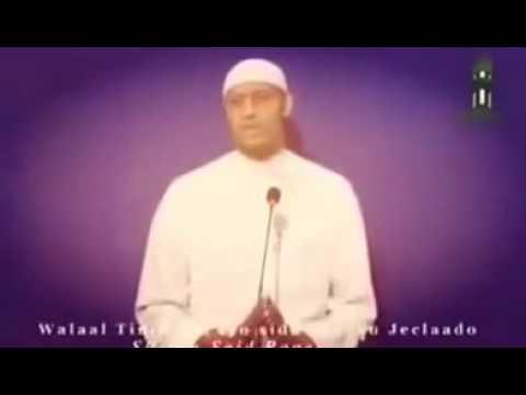 Qiso Dhab ah oo kuwaano qaadasho mudan Sheikh Said rageah 2016