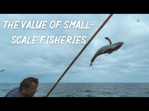 The Value Of Small-Scale Fisheries