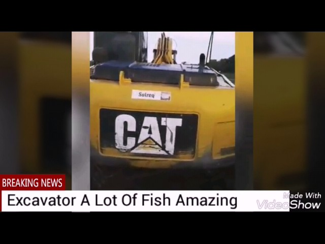 Fishing A Lot of Fish using excavator amazing