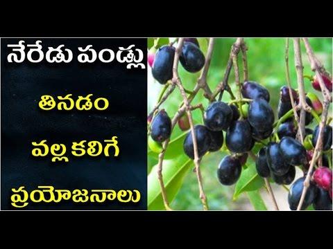నేరేడు పండు వల్ల ప్రయోజనాలు | neredu pandu valla upayogalu