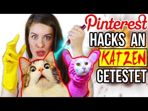 KRASSE PINTEREST HACKS AN KATZEN LIVE GETESTET! 😱 LIFE HACKS im TEST | DIY CAT & HUNDE LIFEHACKS
