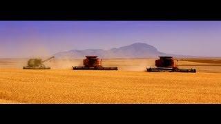 100 Years of Montana Farming!