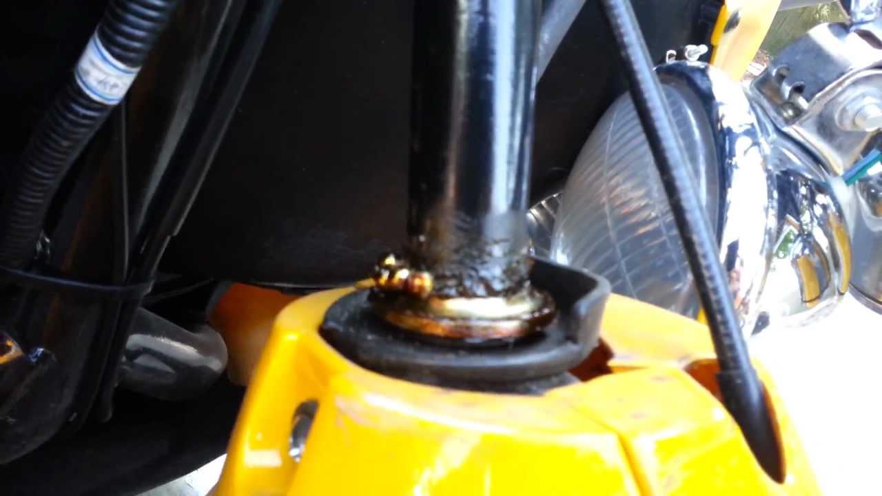 medium resolution of scooter steering head bearings