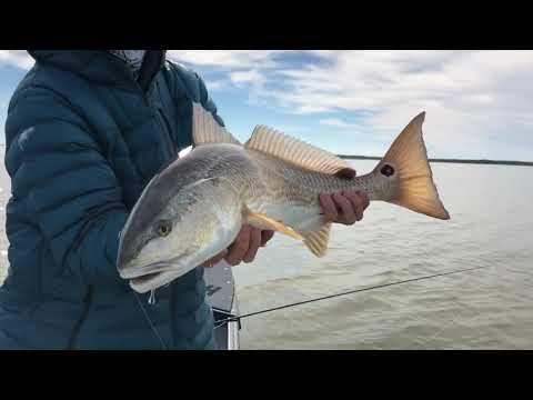 Fly Fishing In Rockport, Texas