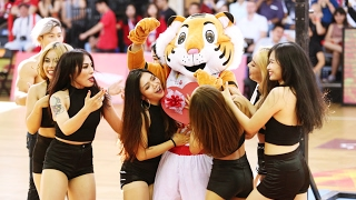 Video [Saigon Hotgirls] Màn vũ đạo cổ động quyến rũ của Saigon Hotgirls cùng với dàn Hotboy 6 múi download MP3, 3GP, MP4, WEBM, AVI, FLV Juli 2018