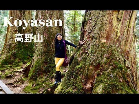 Japan Travel: Koyasan, Kii Peninsula 日本纪伊半岛高野山