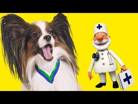Доктора, ДОКТОРА!!! Веселый ЮКИ и кот Сеня заболели! / Сериалити от ЮКИ 7 серия