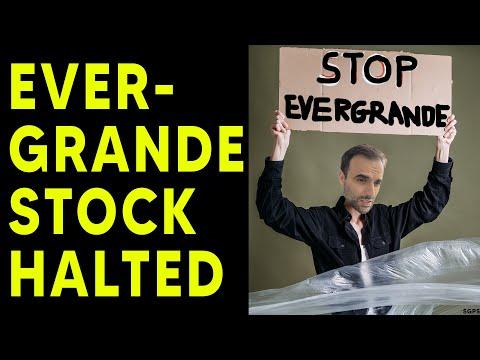 China Halts Evergrande Stock! Major Developments in Collapsing Company