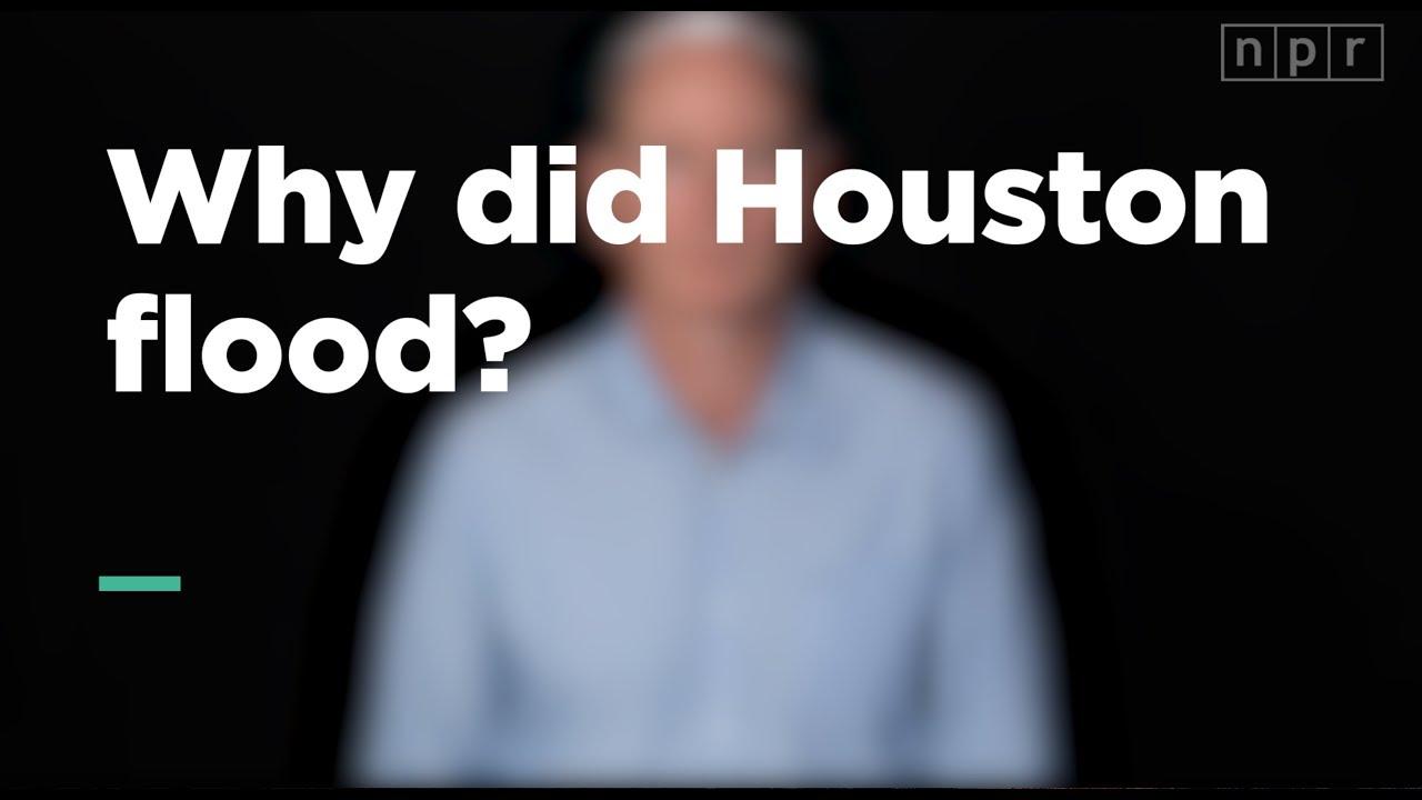 Why did Houston flood? | Let's Talk | NPR