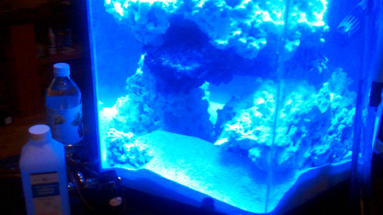 35 gallon hex tank with 20 gallon sump youtube for 20 gallon hexagon fish tank