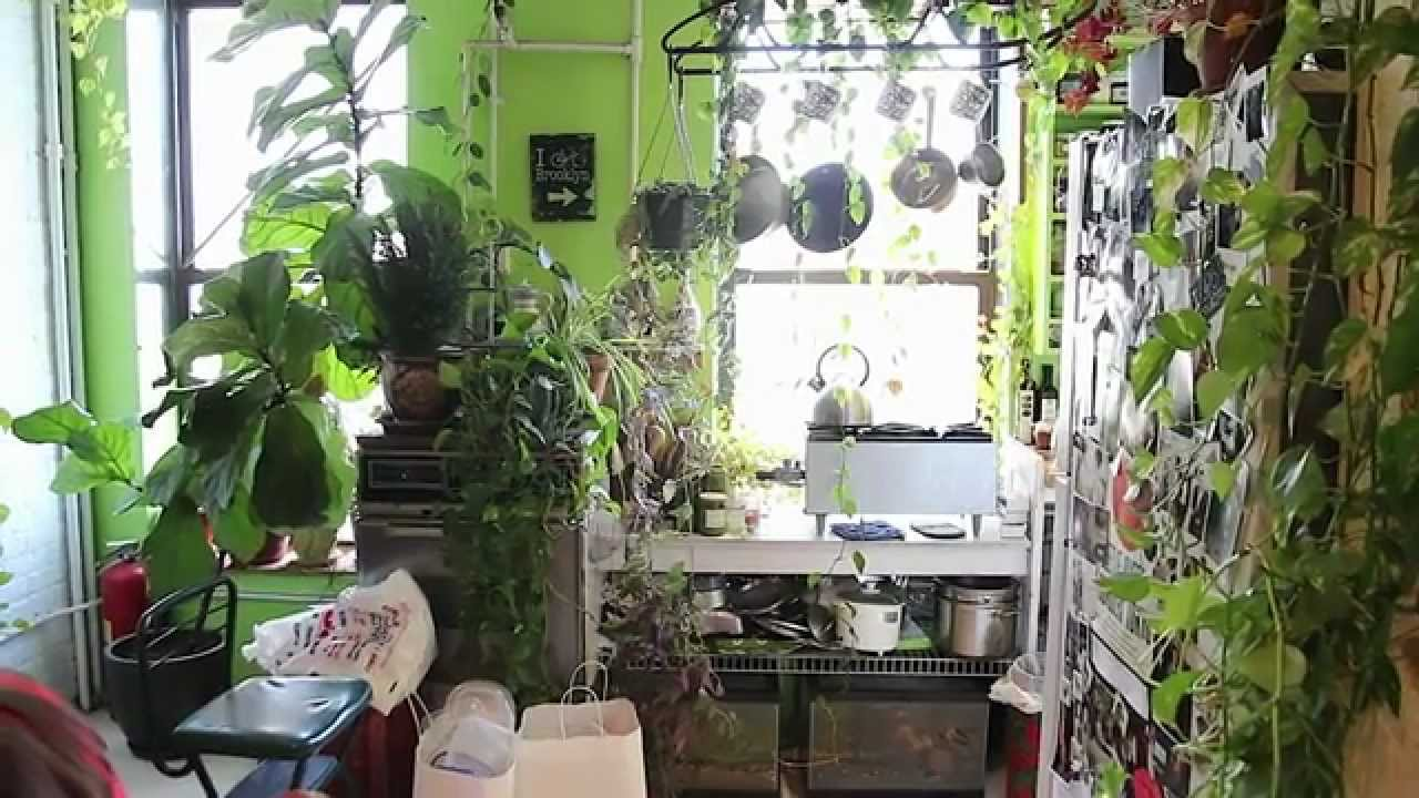 creating an indoor garden