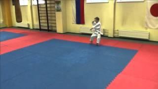 Базовая техника каратэ для новичков клуба