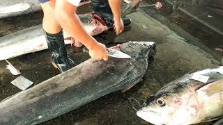 Swordfish Cutting & How to remove skin from Swordfish - Taiwan Donggang