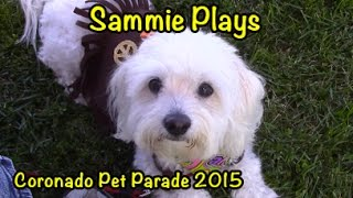 Coronado Pet Parade 2015 SP #52