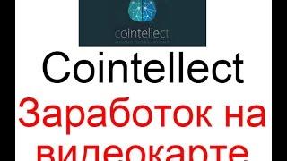 Cointellect - заработок на видеокарте без вложений