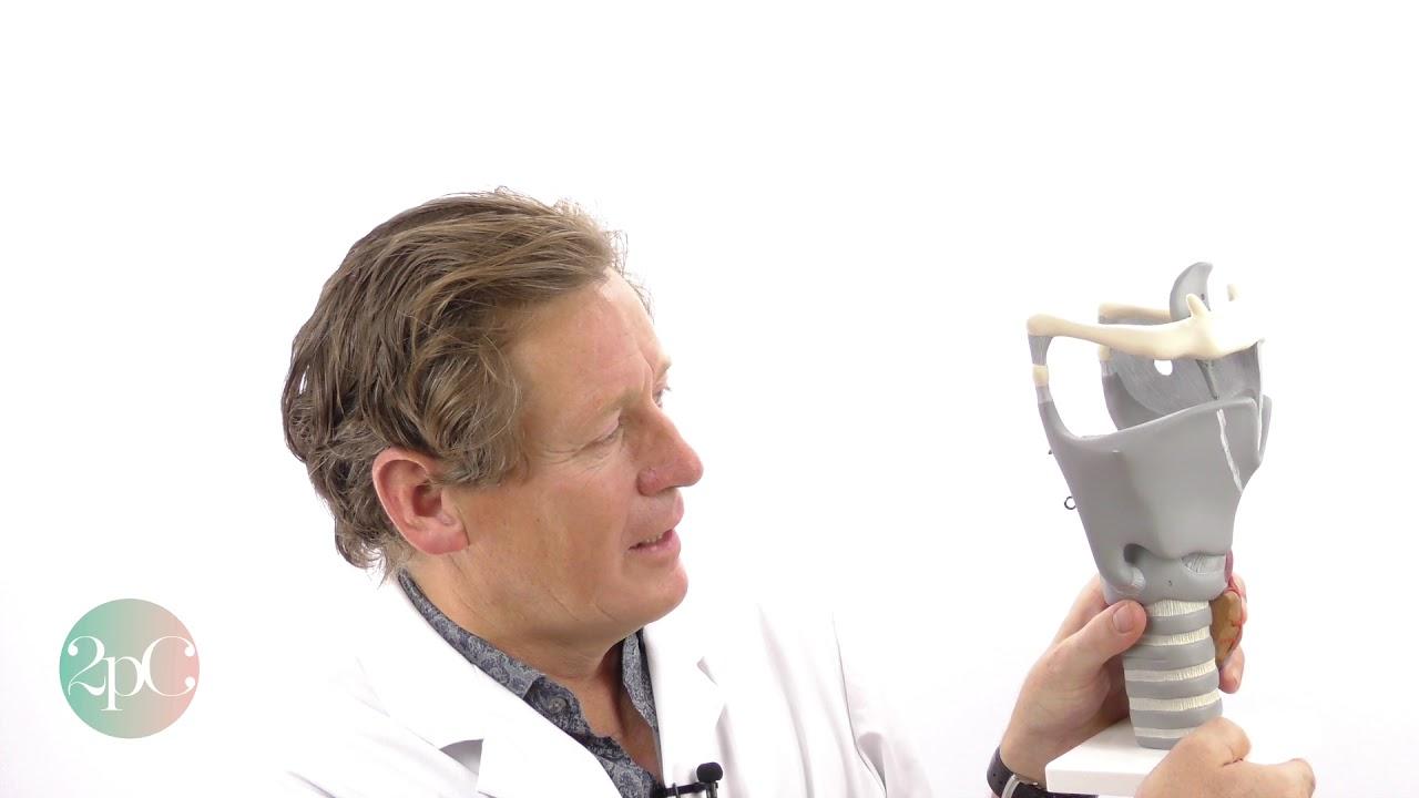 tracheal shave explained by surgeon dr bart van de ven youtube
