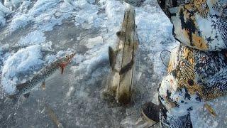 ЗИМНЯЯ РЫБАЛКА на Хапугу Хлопок с Романом Fisherman DV 27 RUS