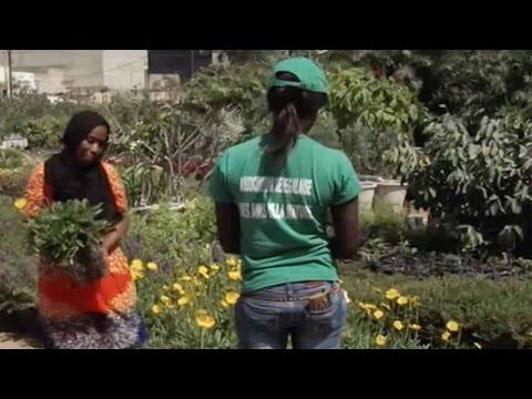 Amateur florists thrive in Senegal