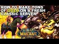 THE ULTIMATE GUIDE TO MAKING TONS OF GOLD DURING CLASSIC WOW LAUNCH