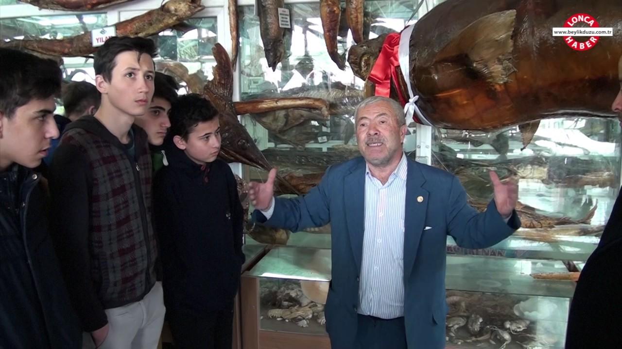 Deniz Canlıları Müzesi