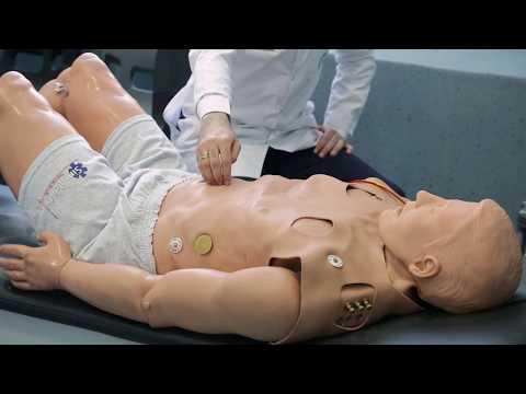 Թերապիա. ֆիզիկալ հետազոտման մեթոդները: ԵՊԲՀ YSMU