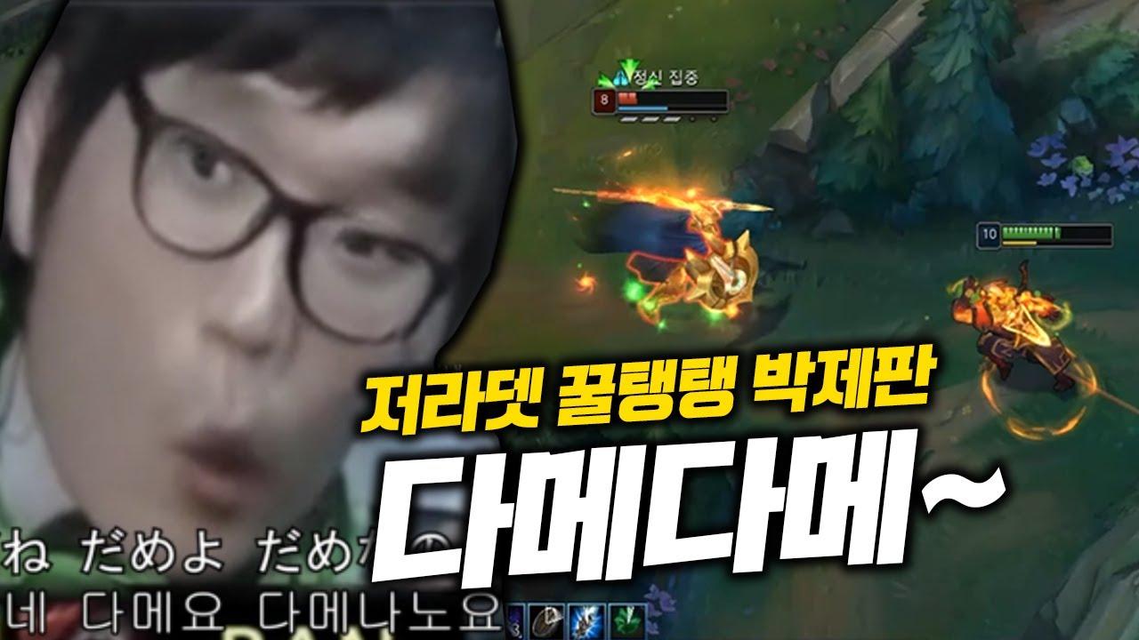 저라뎃&꿀탱탱 박제판 그 진실은...? 다메다메... (쉔)