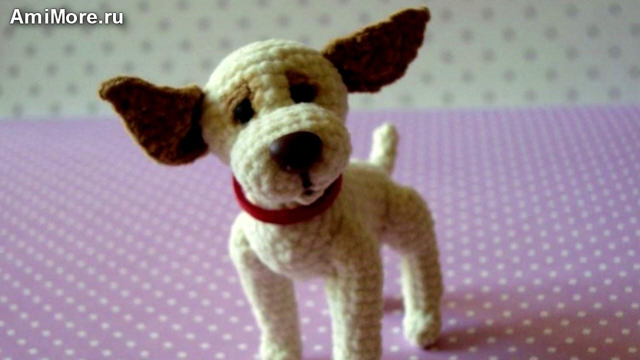 амигуруми схема собачки на ладошке игрушки вязаные крючком Free