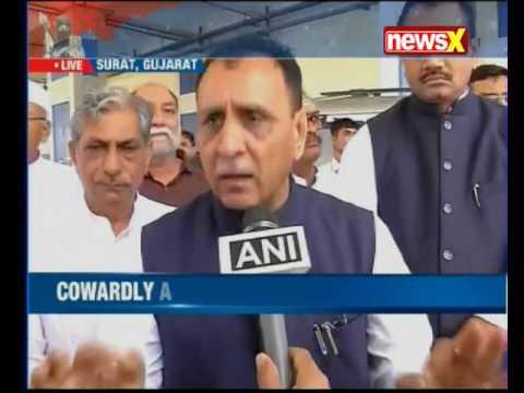Amarnath Yatra: Gujarat CM announces ex-gratia to victims' kins; nominates driver for bravery award