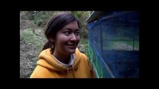 Organic Japanese Farm -Volunteering At Asian Rural Institute