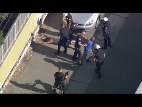Stolen Vehicle Pursuit Suspect Surrenders In Anaheim