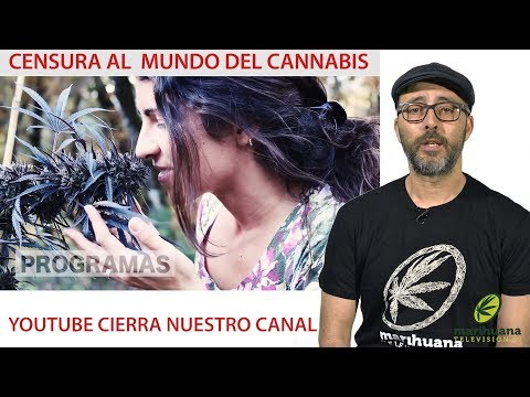 CENSURA A MARIHUANATELEVISION. YouTube CENSORSHIP to Cannabis Channels. Freedom of expression BANNED