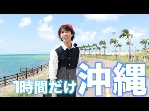 1時間だけ沖縄行って日帰りで帰ってみた。