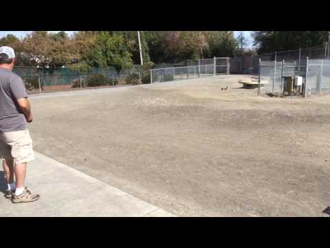 RC track in Sunnyvale, CA