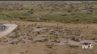 Botswana : oiseaux survolant le marais