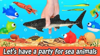 Let's have a party for whale shark and sea animals, crab, squid, animal cartoons for kidsㅣCoCosToy