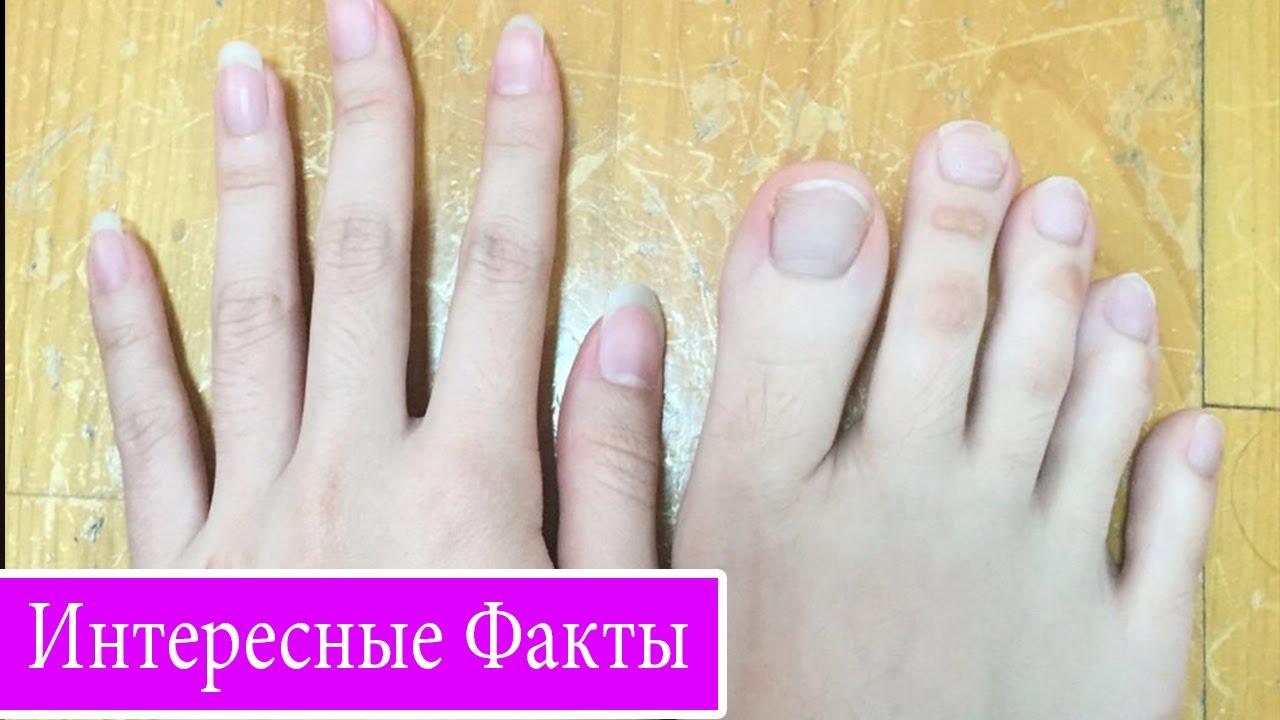Девичи ножки пальцыног видео фото 242-803
