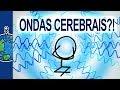 O que são as ondas cerebrais? | Minuto da Terra