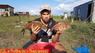 Удачная рыбалка на реке Кинель в Самарской области ловим ЛЕЩЕЙ и ПОДЛЕЩИКОВ на засолку ДОНКАМИ