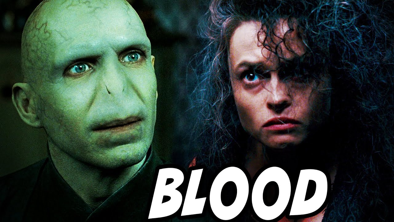 Why the Death Eaters Accepted Voldemort as a Half-Blood - Harry Potter Theory