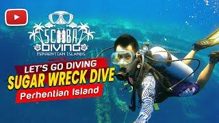 Perhentian Islands Sugar Wreck Dive