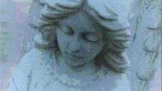 Los Humillados /  Ian Curtis Tribute