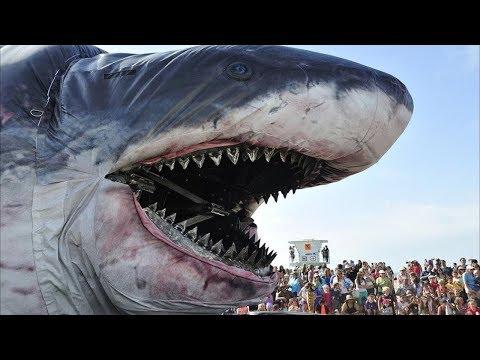 5 Самых аномально больших животных в мире
